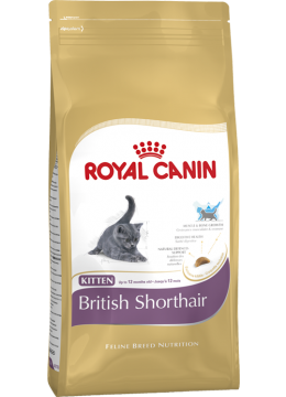 Royal Canin British Shorthair Kitten