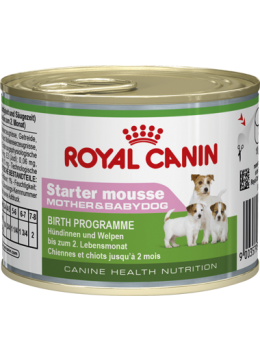 Royal Canin Starter Mousse Canine