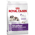 Изображение 1 - Royal Canin Giant Starter