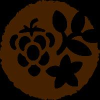 Фрукты и травы