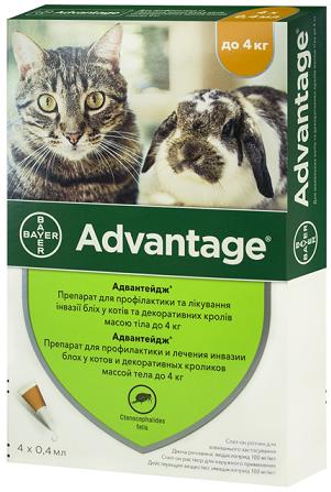 bayer Bayer Advantage 40, 1 пипетка