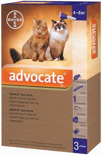 bayer Bayer Advocate для кошек от 4 до 8 кг, 1 пипетка