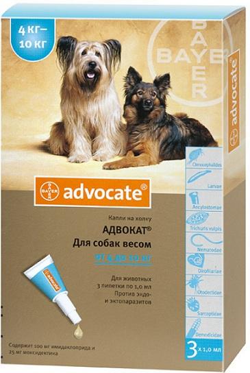 bayer Bayer Advocate для собак от 4 до 10 кг, 1 пипетка
