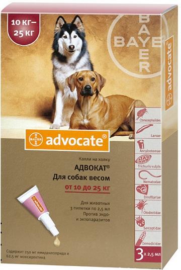 bayer Bayer Advocate для собак от 10 до 25 кг, 1 пипетка