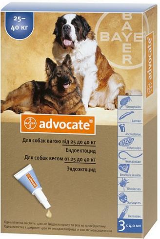 bayer Bayer Advocate для собак более 25 кг, 1 пипетка