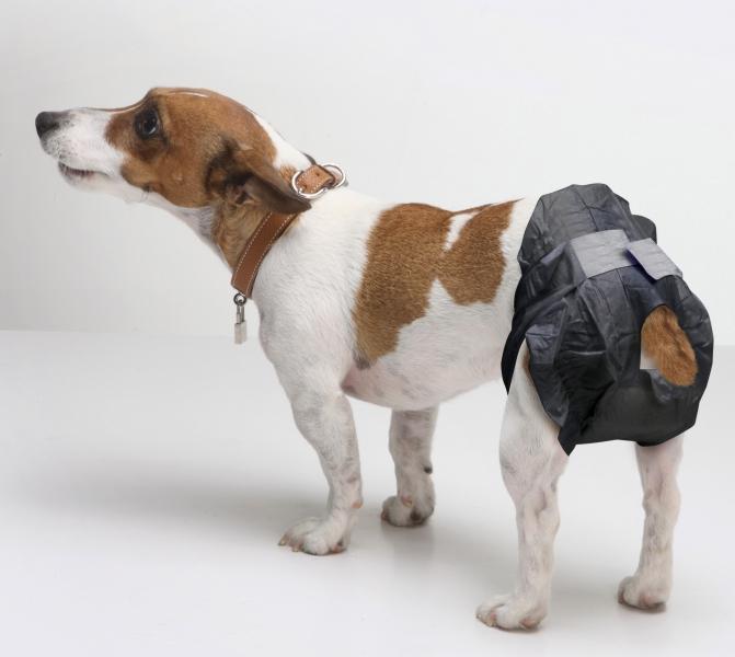 savic 3380 Savic Comfort Nappy Памперсы для собак, 32-42 см